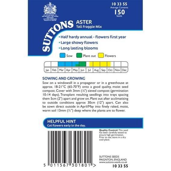 Aster Seeds - Tall Fraggle Mix