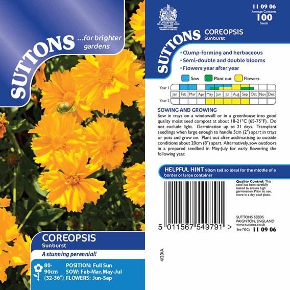 Coreopsis Seeds - Sunburst