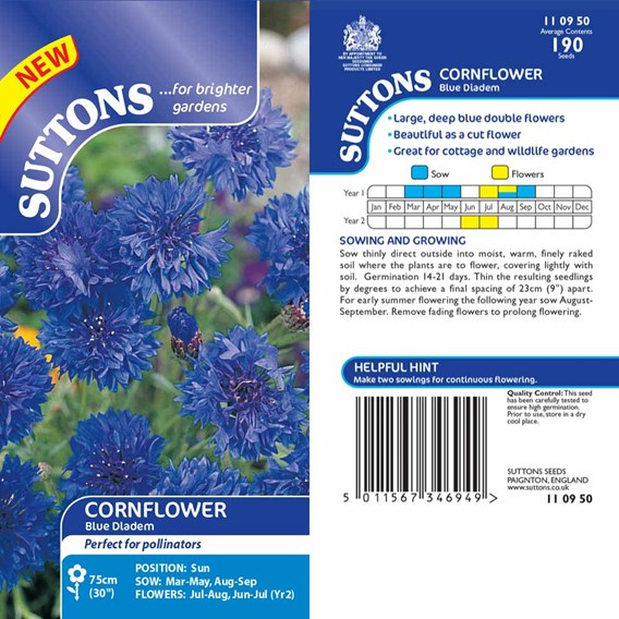 Cornflower Seeds - Blue Diadem