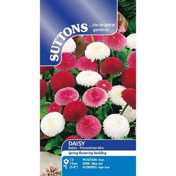 Daisy Seeds - Pincushion Mix