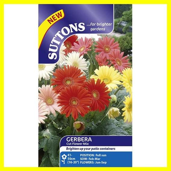 Gerbera Seeds - Cut Flower Mix