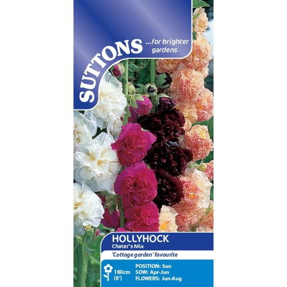 Hollyhock Seeds - Chater's Mix