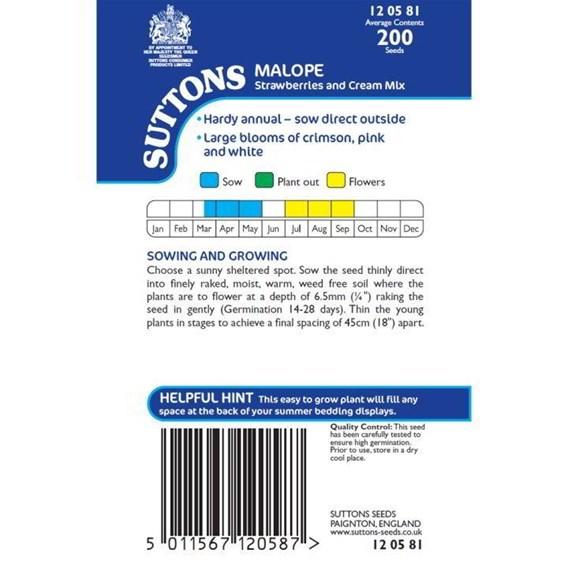 Malope Seeds - Strawberries & Cream Mix