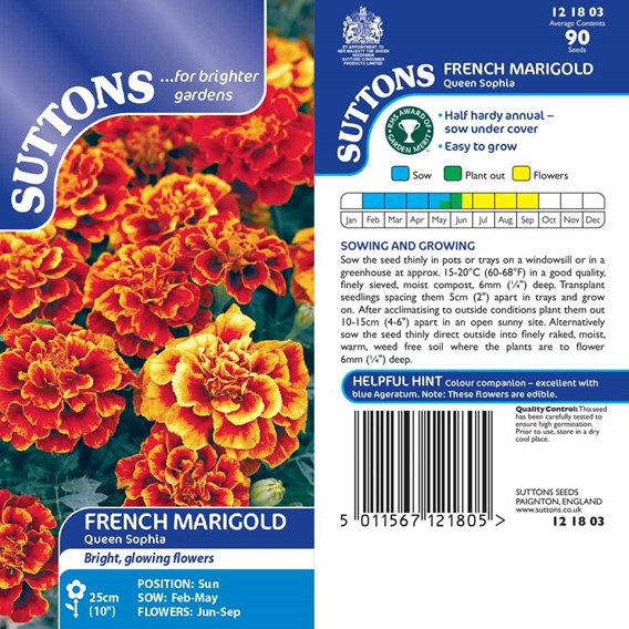 Marigold French Seeds - Queen Sophia
