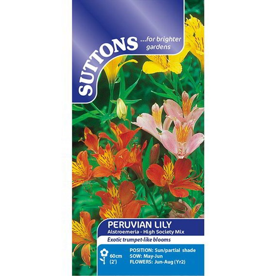 Peruvian Lily Seeds - High Society Mix