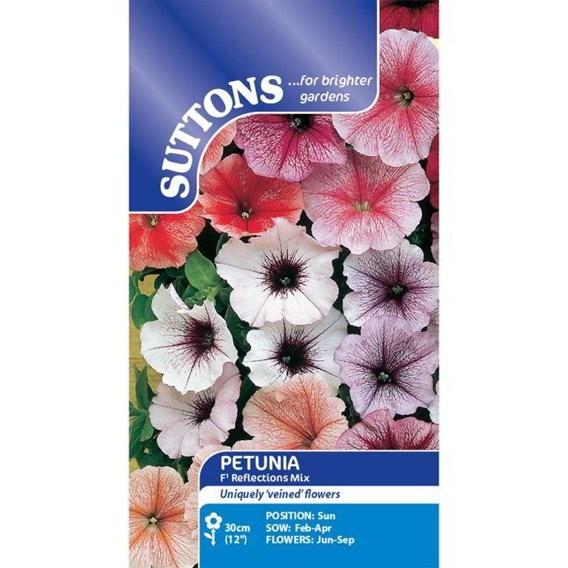 Petunia Seeds - F1 Reflections Mix