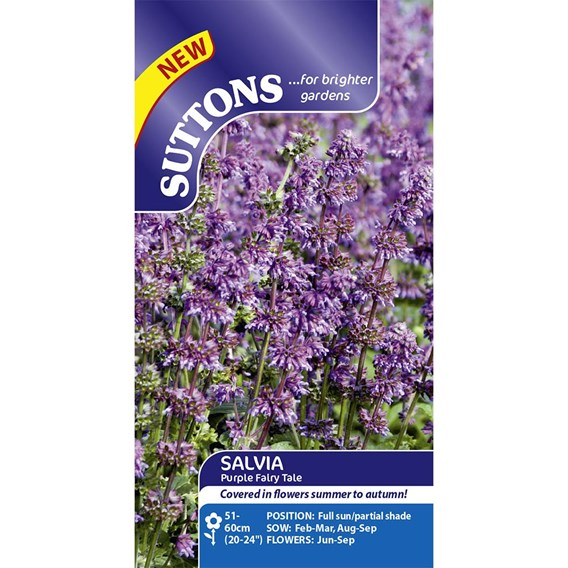Salvia Seeds - Purple Fairy Tale