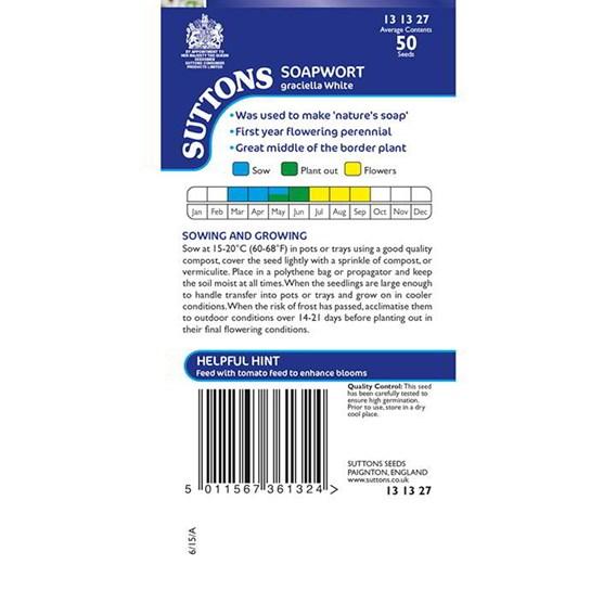 Soapwort Seeds - Graciella White