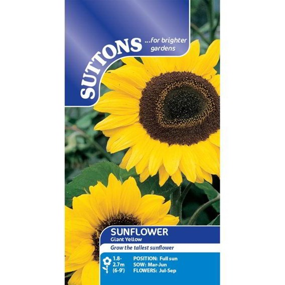 Sunflower Seeds - Giant Yellow
