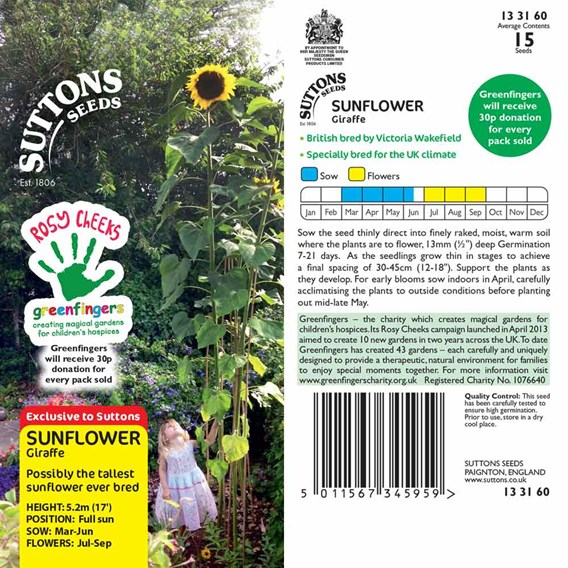 Sunflower Seeds - Giraffe
