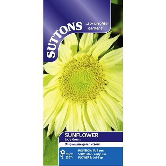 Sunflower Seeds - Jade Green