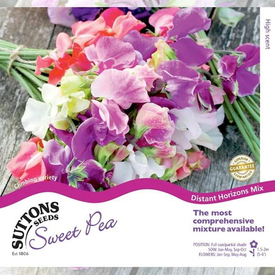 Sweet Pea Seeds - Distant Horizons