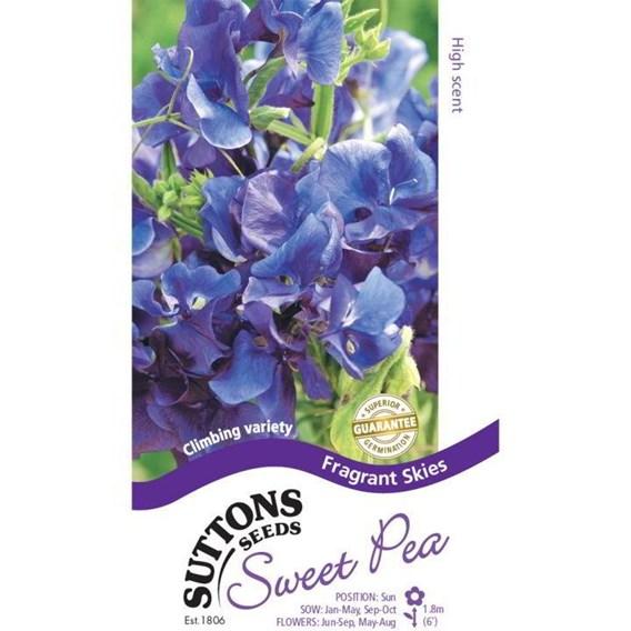 Sweet Pea Seeds - Fragrant Skies