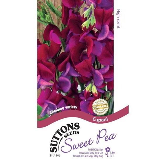 Sweet Pea Seeds - Cupani
