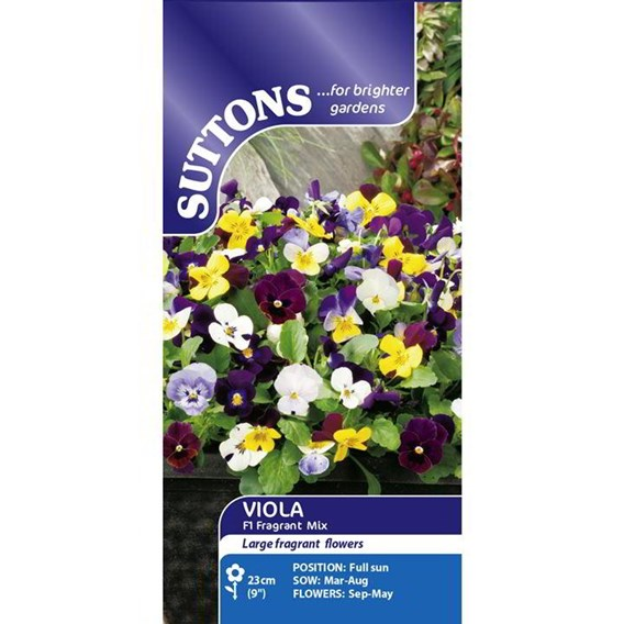 Viola Seeds - Fragrant Mix