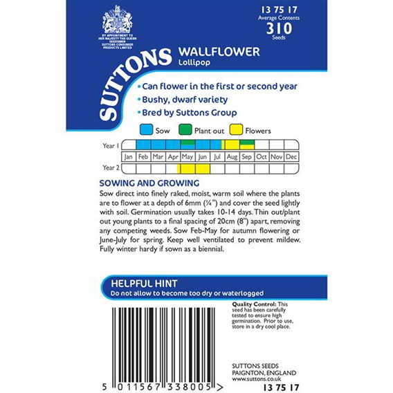 Wallflower Seeds - Lollipop