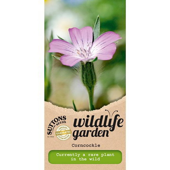 Wildlife Garden Seeds - Corncockle