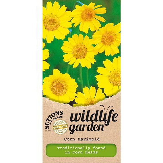 Wildlife Garden Seeds - Corn Marigold