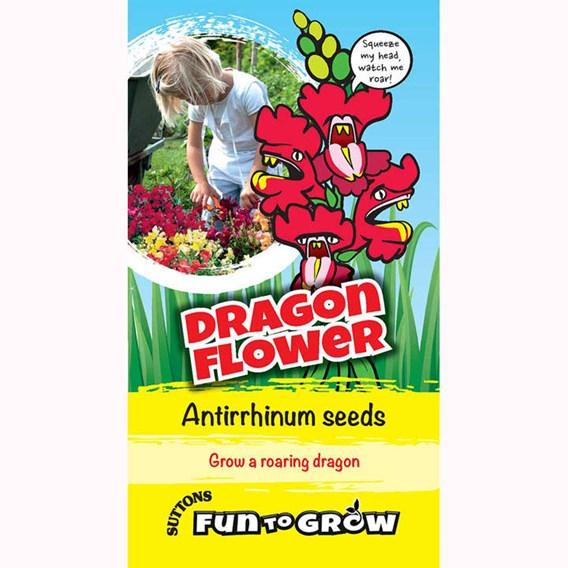 Antirrhinum - Dragon Flower (Magic Carpet Mix)