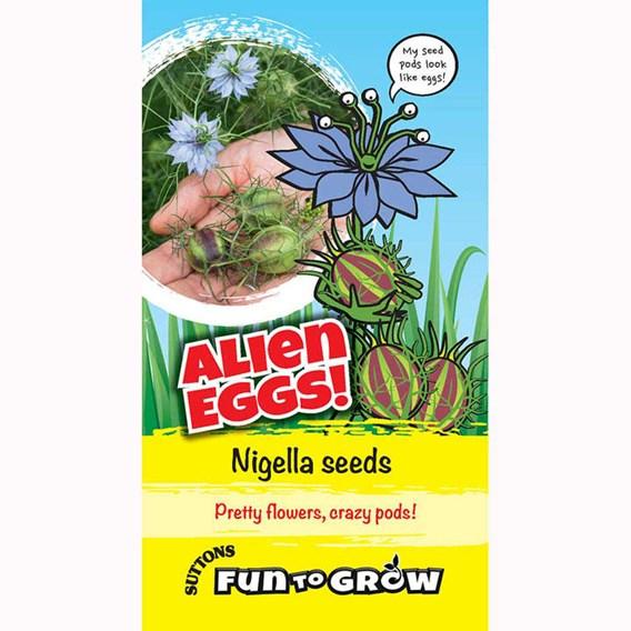 Nigella -Alien eggs