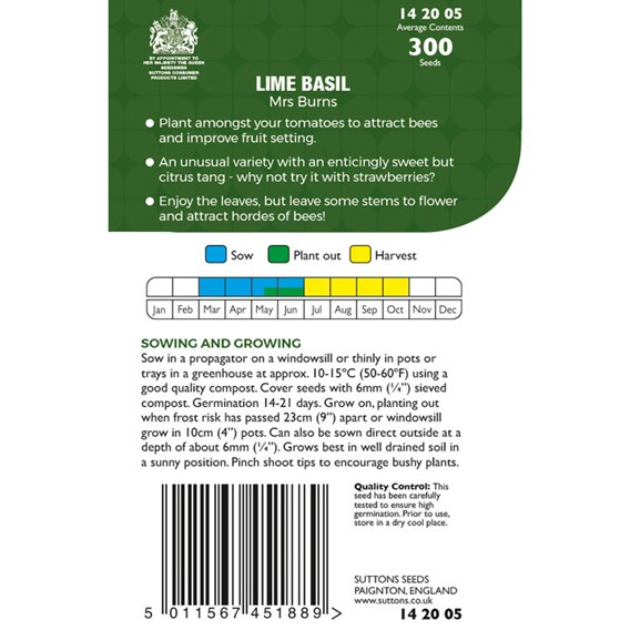 Herb Seeds - Basil Lime Mrs Burns