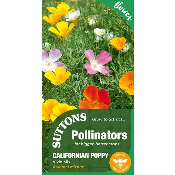 Poppy Californian Seeds - Vivid Mix