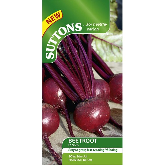 Beetroot Seeds - F1 Solo