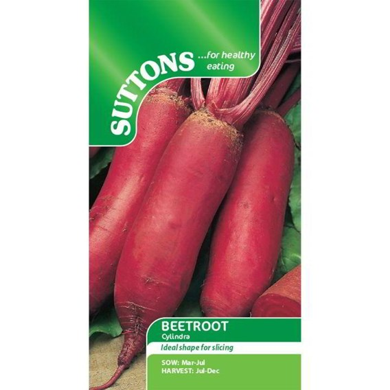 Beetroot Seeds - Cylindra