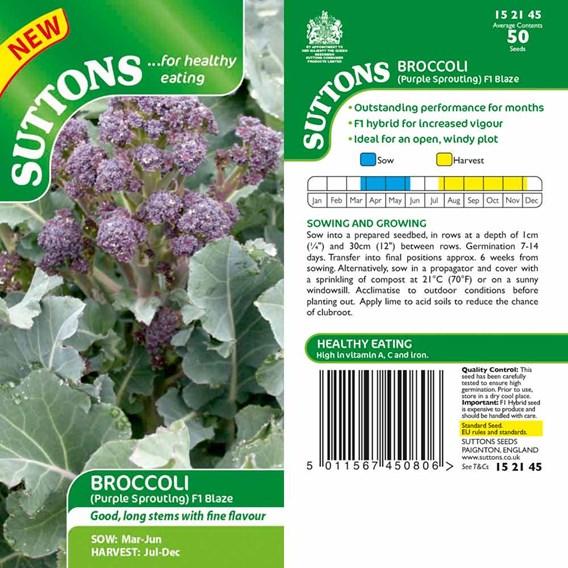 Broccoli Purple Sprouting - Blaze F1