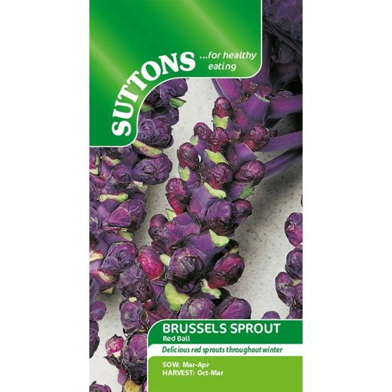 Brussels Sprout Seeds - Red Ball