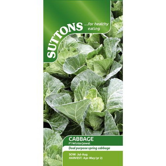 Cabbage Seeds - F1 Winterjewel