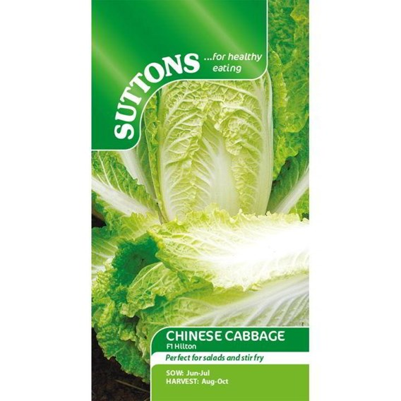 Chinese Cabbage Seeds - Hilton