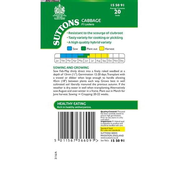 Cabbage Seeds - F1 Lodero
