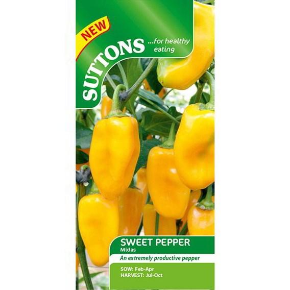 Pepper Sweet Seeds - Midas