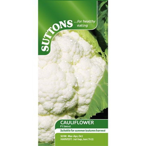 Cauliflower Seeds - F1 Seoul