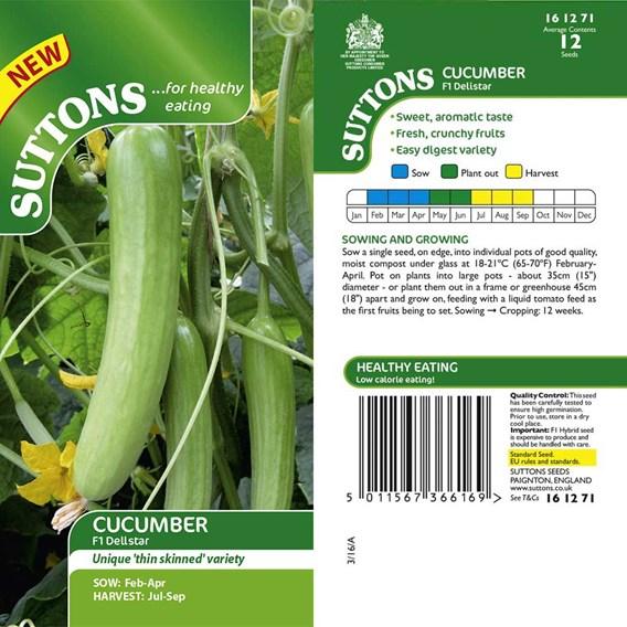 Cucumber Seeds - F1 Delistar