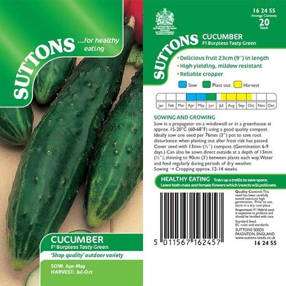 Cucumber Seeds - F1 Burpless Tasty Green