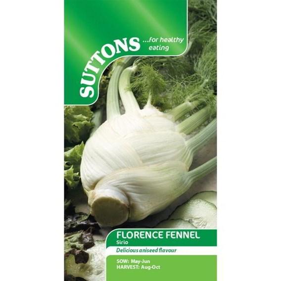 Florence Fennel Seeds - Sirio