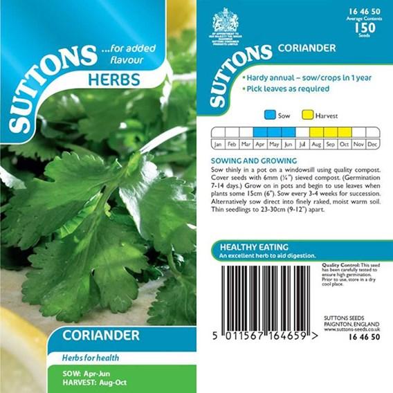 Herb Seed - Coriander