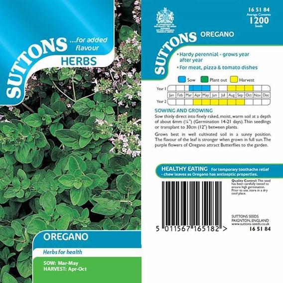 Herb Seed - Oregano