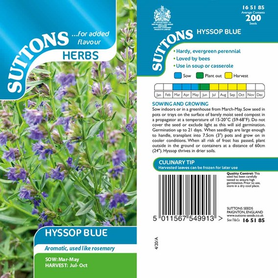 Herb Seeds - Hyssop Blue