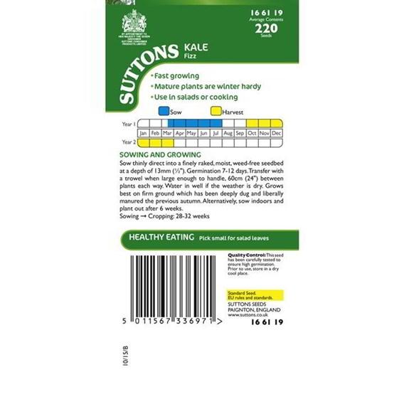 Kale Seeds - Fizz