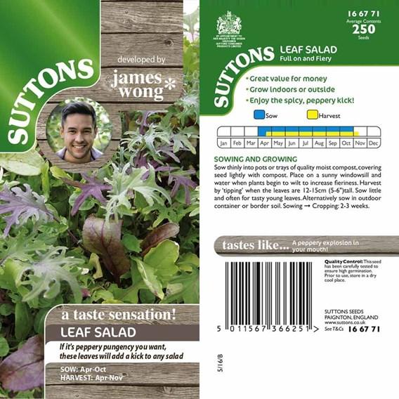 Salad Leaves Seeds - Full On & Fiery