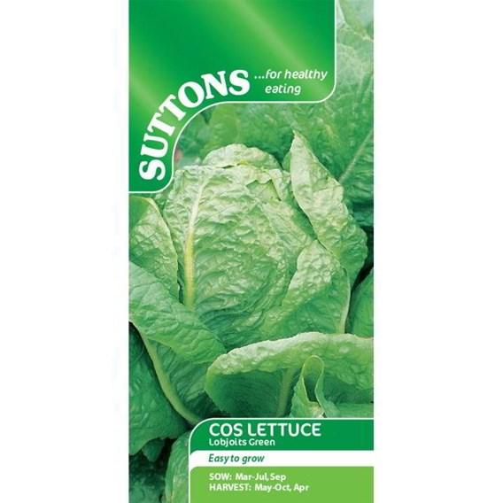 Lettuce Seeds - Lobjoits Green