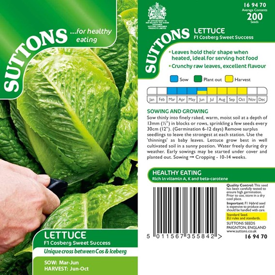 Lettuce Seeds Cosberg Sweet Success