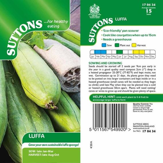 Luffa Seeds