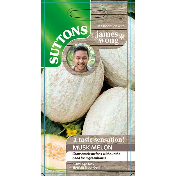 Melon Musk Seeds - F1 Emir