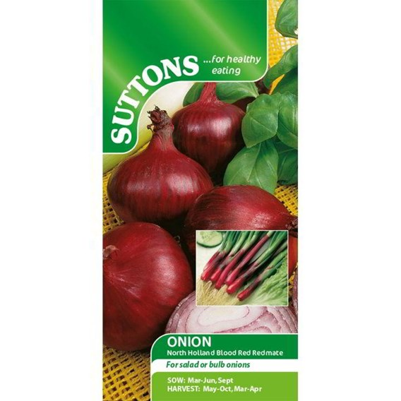 Onion (Salad) Seeds - North Holland Blood Red Redmate