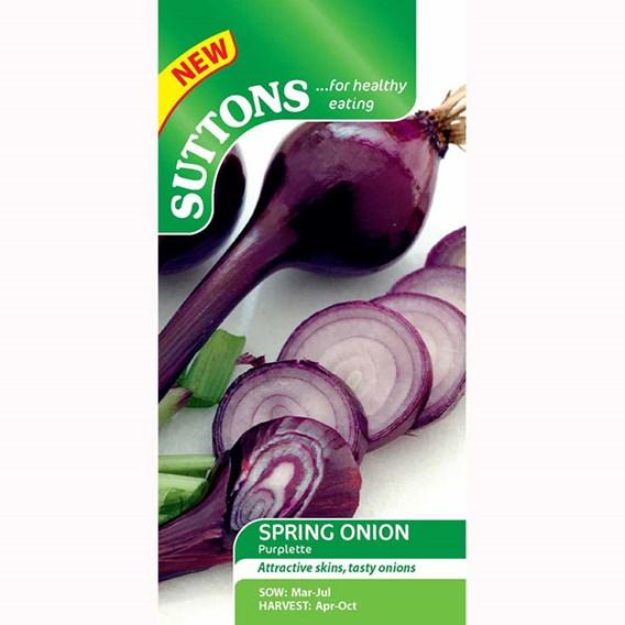 Onion Seeds - Purplette