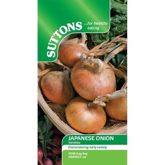Onion Seeds - Senshyu Semi-Globe Yellow